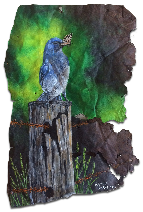 Bluebird on rusted metal