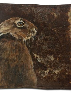 Hare on old crushed can