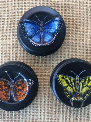 Butterflies on mason jar lids