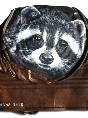 Raccoon on crushed can