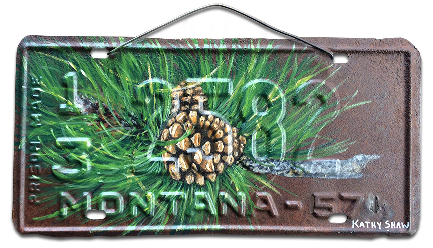 1957 Montana License Plate with pinecone branch
