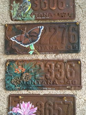 Montana License Plates with State Symbols
