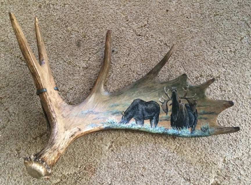 Moose horn painting