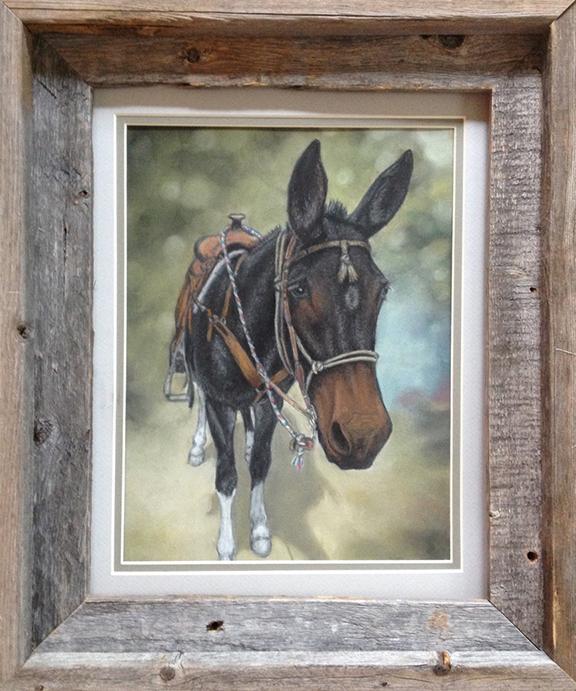 Mule Portrait - Pastel