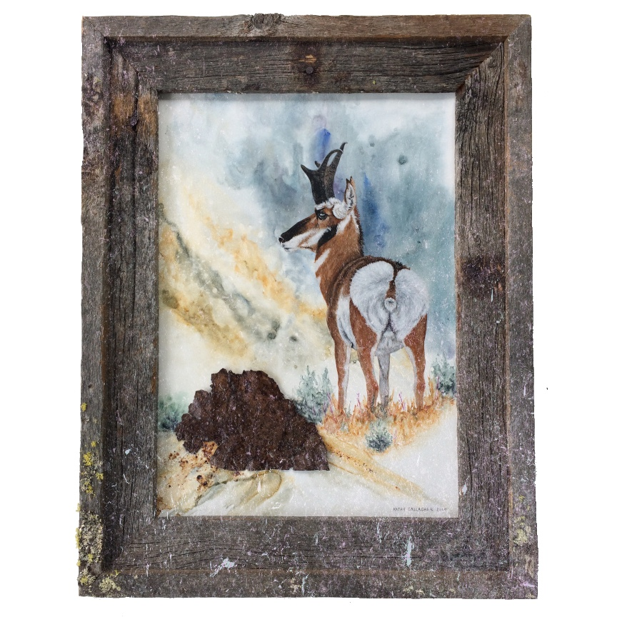 """Watercolor and acrylic with antelope in barn wood frame 13"""" x 18"""""""