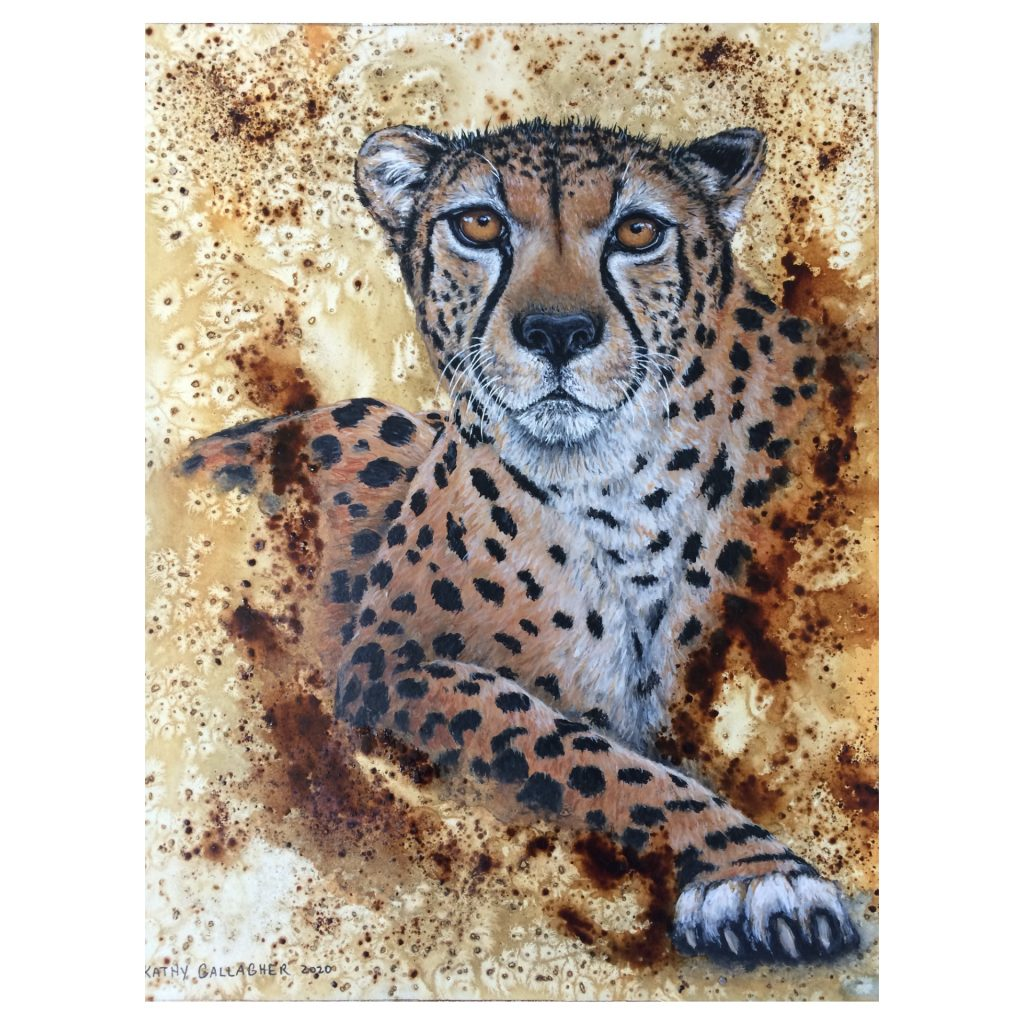 Cheetah painted in acrylic with watercolor background - Kathy Gallagher