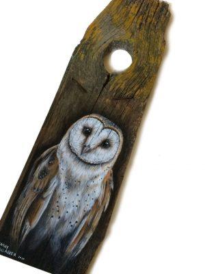 """Barn Owl on Old Wood - 7"""" x 24"""""""