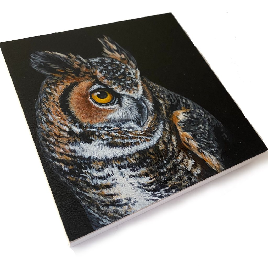 """Great horned owl on 6"""" x 6"""" cradled panel"""