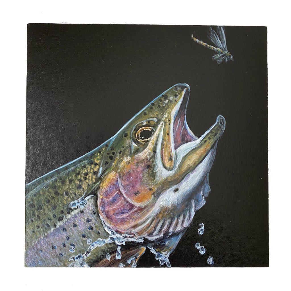 "Rainbow trout on 6"" x 6"" cradled panel"