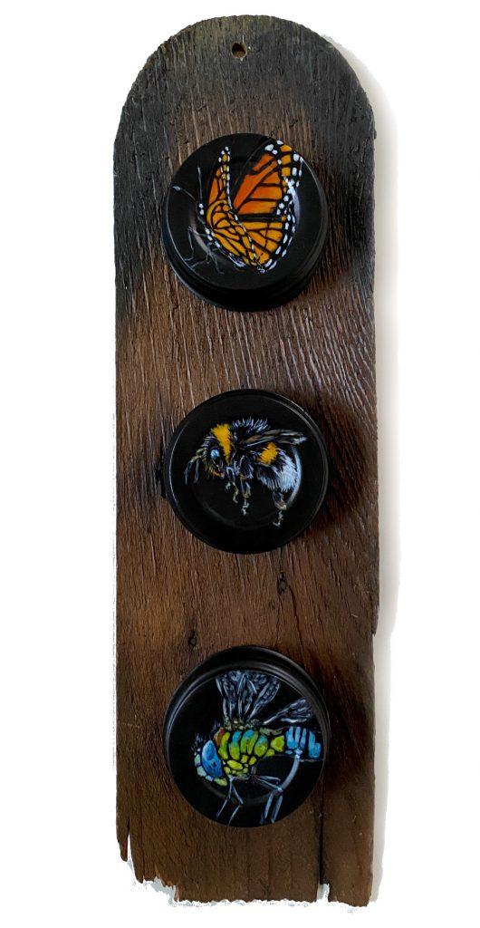 Bug Family on Mason Jar Lids on Wood Shingle