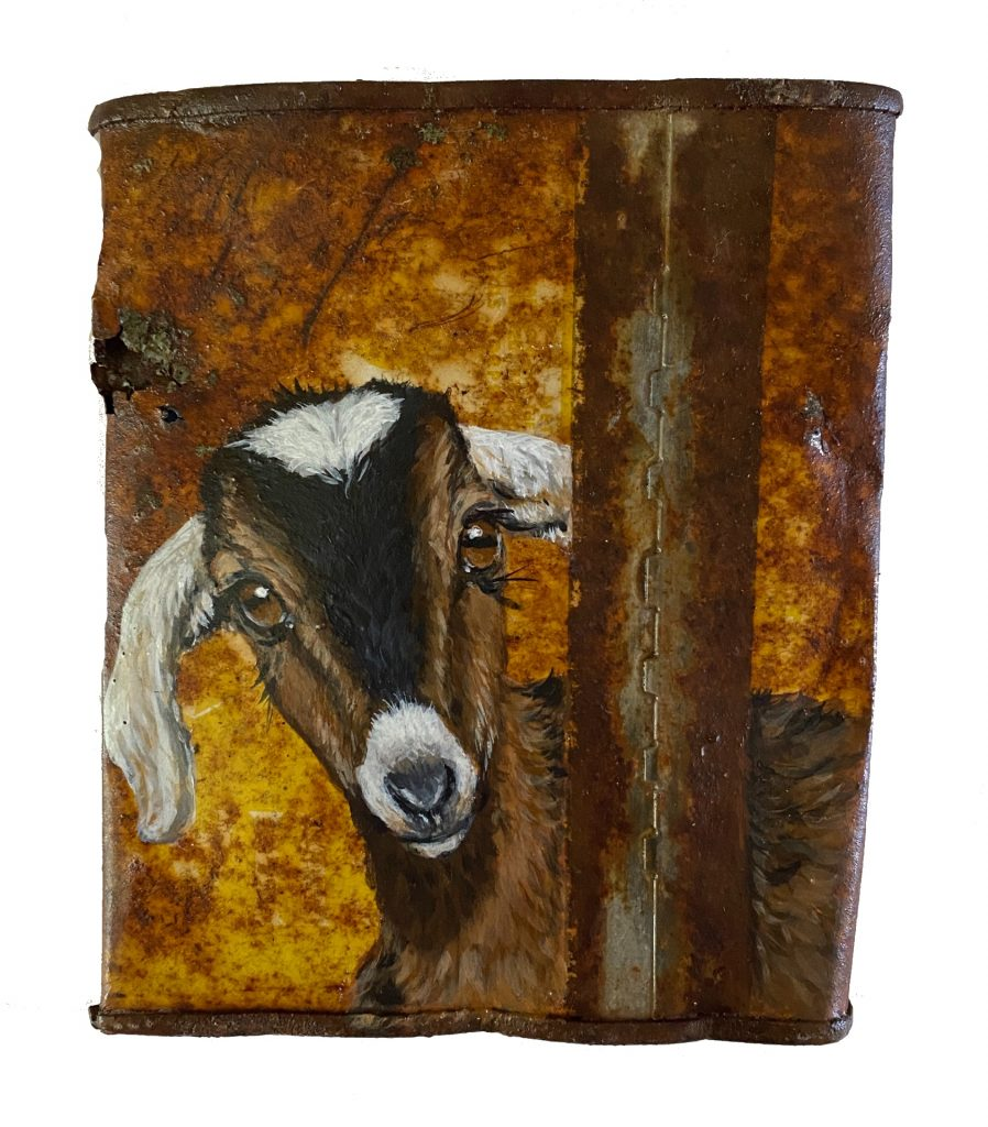 Goat on Crushed Soup Can