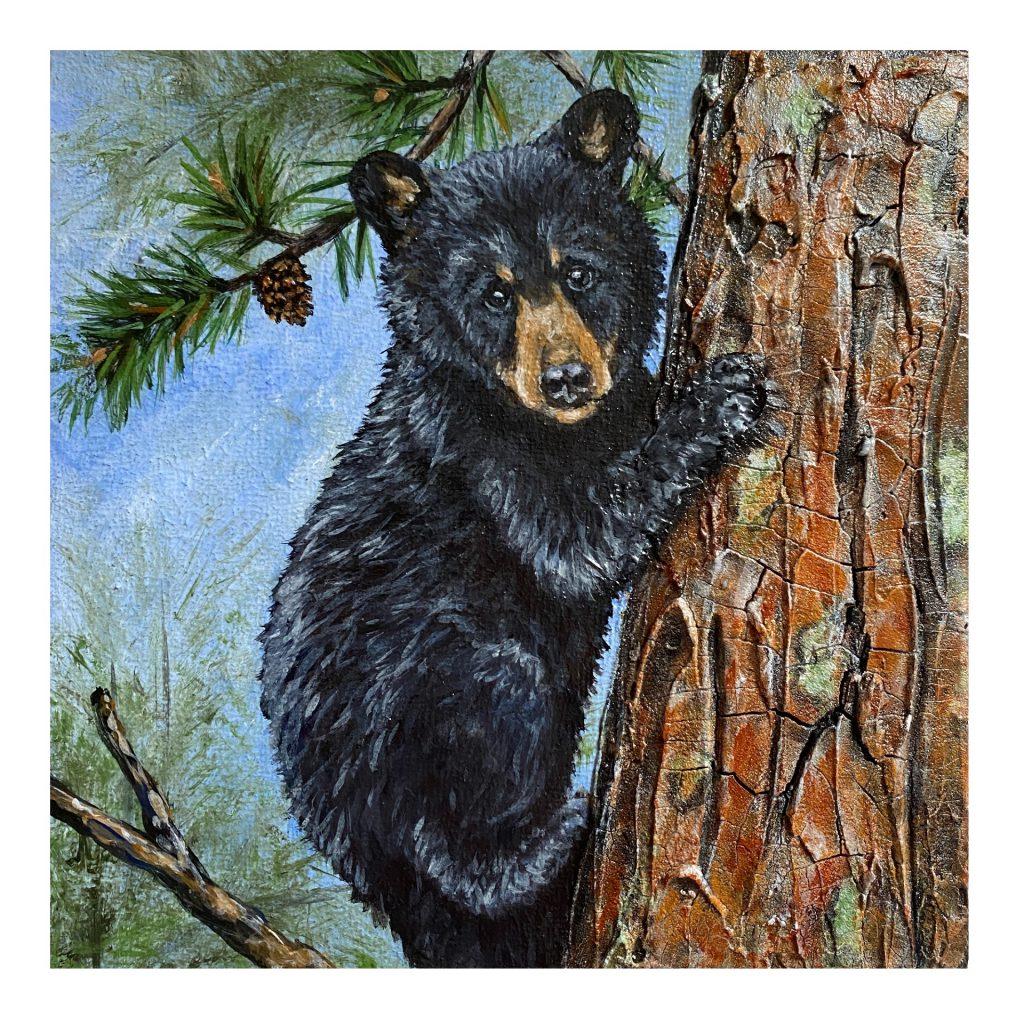 "Black Bear Cub 6"" x 6"" cradled panel"
